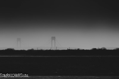 Verrazano Narrows Bridge from the Jamaica Bay Wildlife Refuge